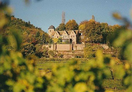 Ruine Kropsburg