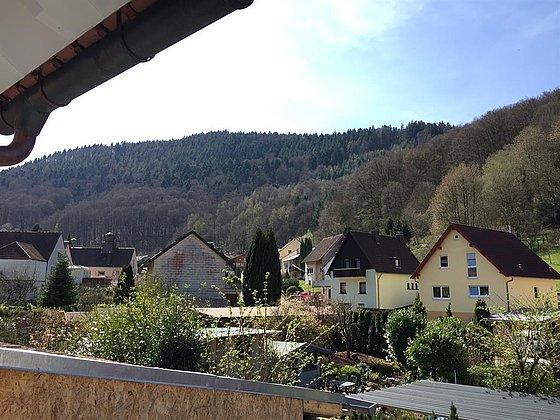 Ausblick vom Haus auf den Rehberg
