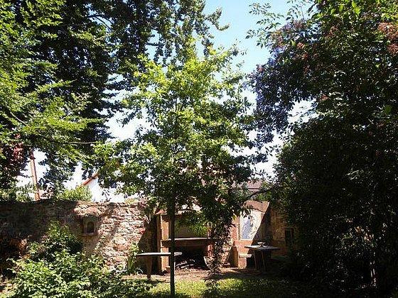 Kräutergarten Kirrweiler