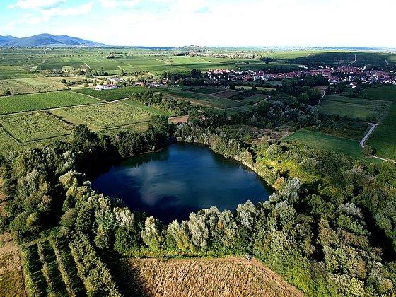 Luftaufnahme Biotopweiher und Göcklingen