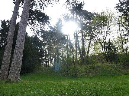 Landauer Nordpark heute